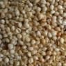 Coussin Naturel balles de céréales & coton bios 20*40 cm