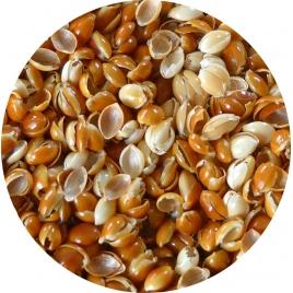 Recharge balles de millet biologiques