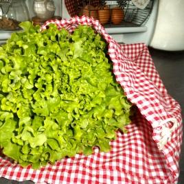 Grand sac à salade
