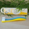 Brosse à dents écologique à tête rechargeable